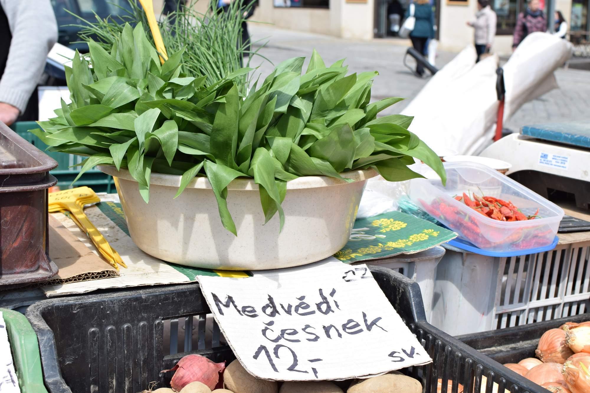 Bylina medvědího česneku na Zelném trhu v Brně. Foto: Lenka Jebáčková