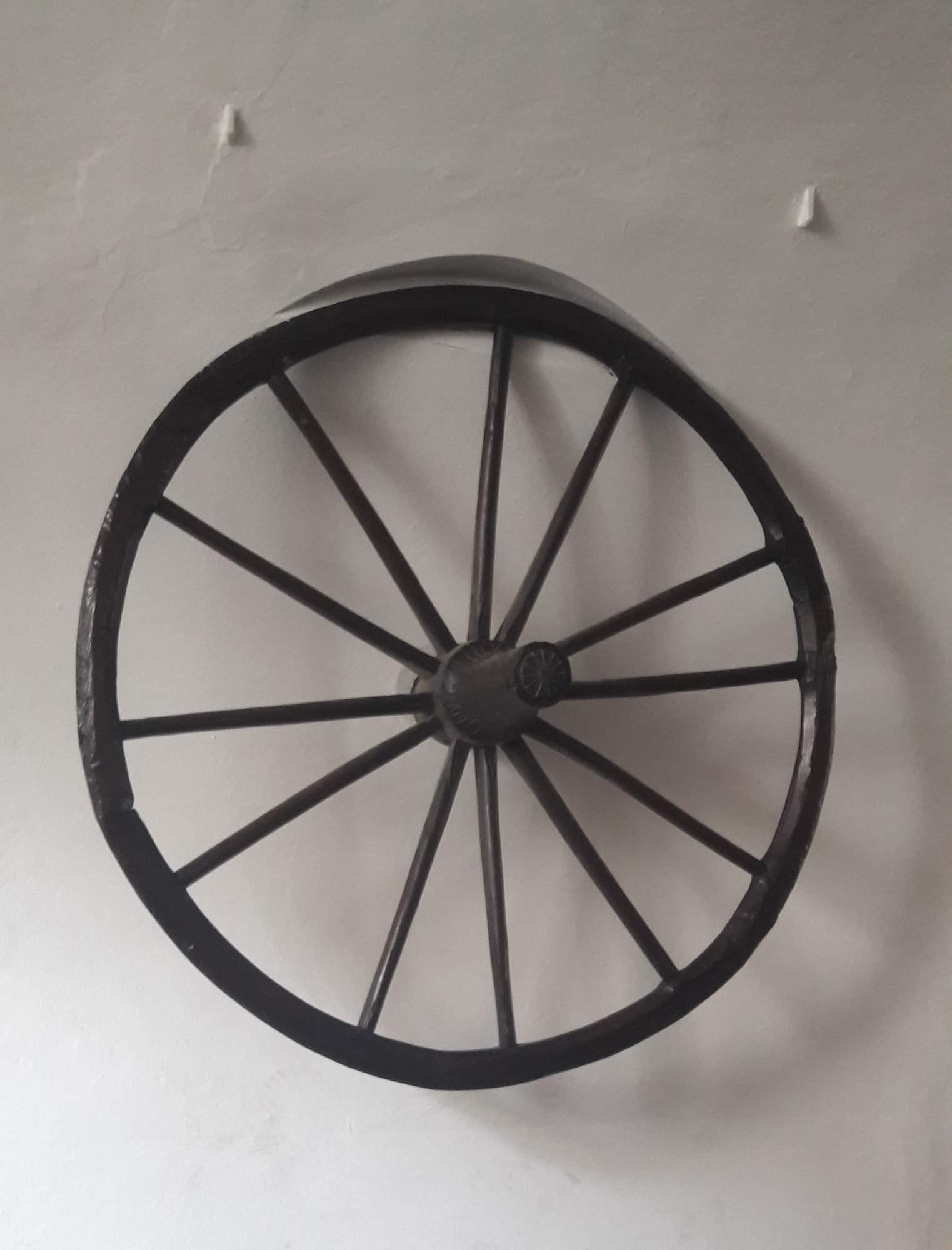 Brněnské kolo je jednou z hlavních atributů města Brna. FOTO: Tereza Hálová