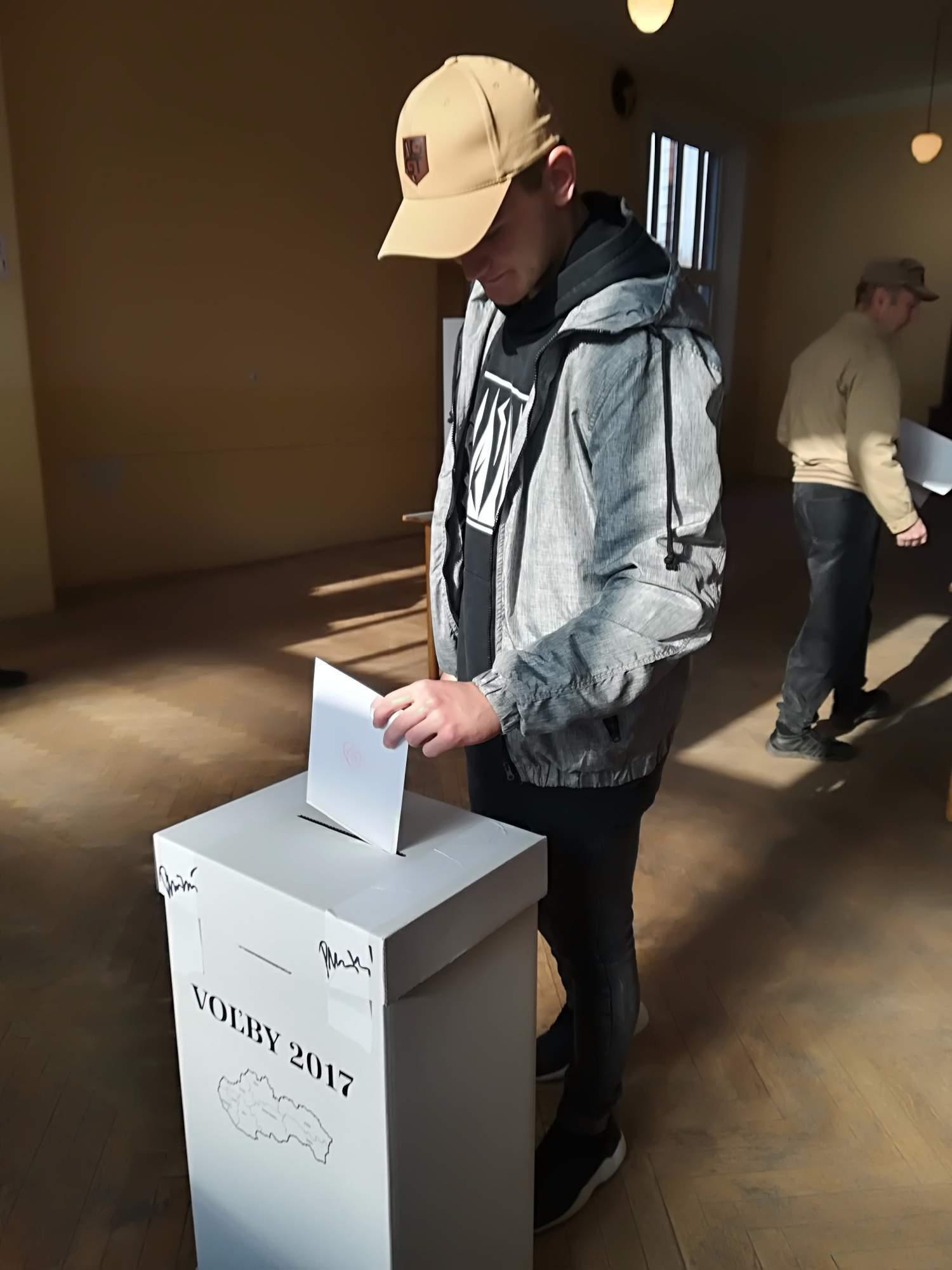 Provolič pri voľbách