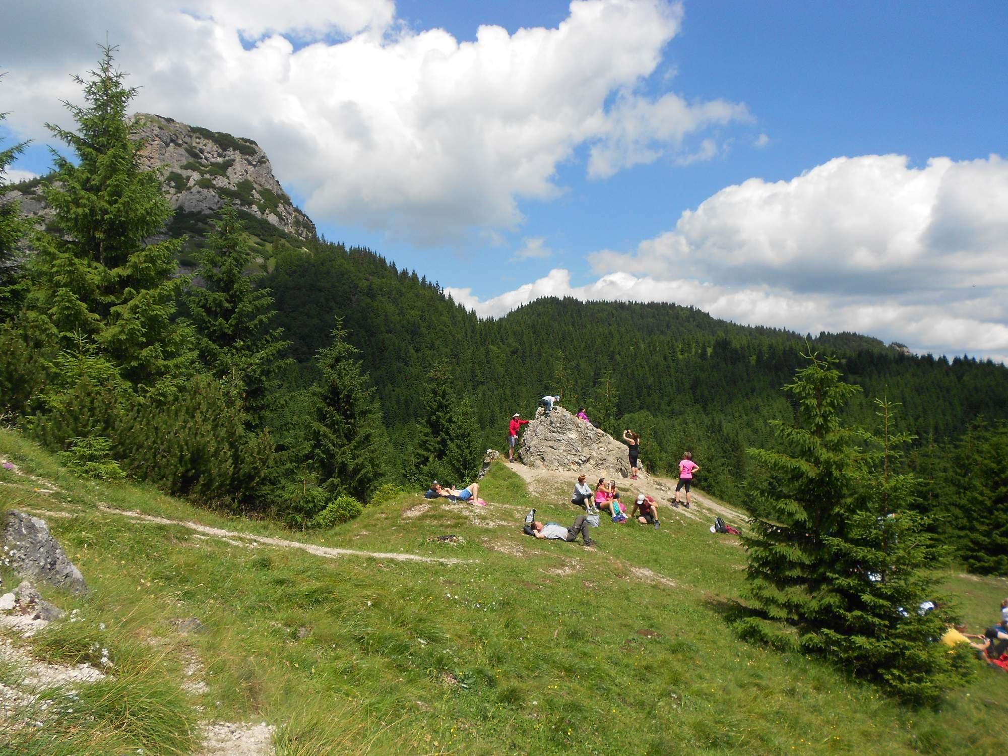 Rozšíření divoké přírody na více území by se Češi měli dočkat v příštím desetiletí. Foto: Dominika Sladká