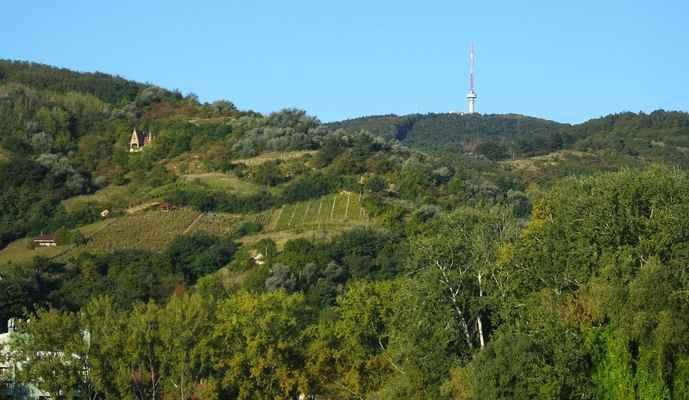 pohled k hoře tokaji hegy...