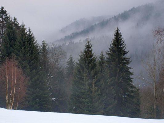 Pro koly a skupiny ski arel Rejdice - Koenov