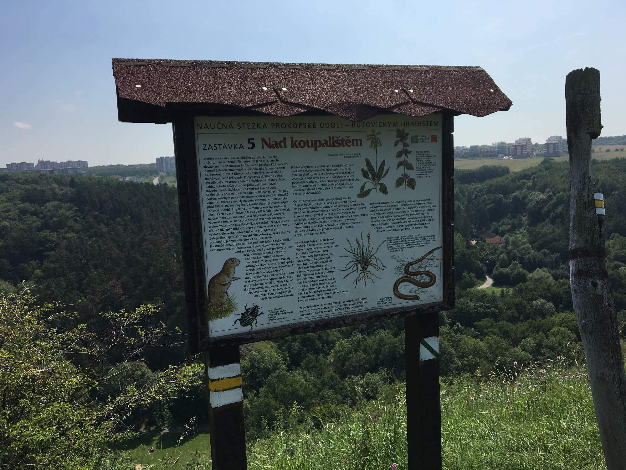 seznamka pro ottawa ontario
