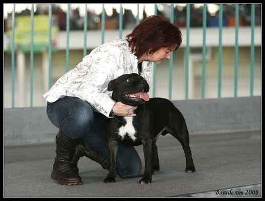 Jacob ze Smiřické zahrady - CAC, CACIB - Třída: šampionů - psi