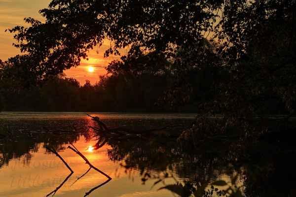 Slepé rameno řeky Moravy. Sluníčko začíná hřát, příroda se probouzí k dennímu životu.