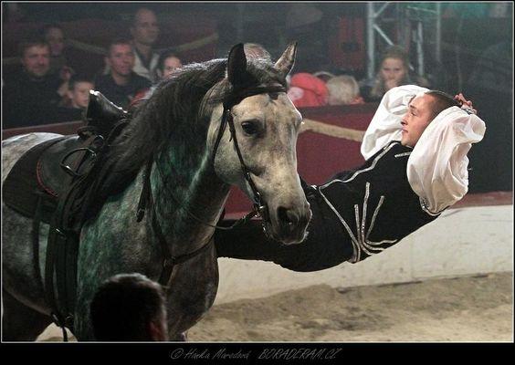 Haraldos - džigitovka