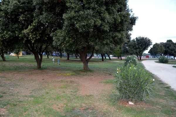 ještě poslední záběr na místo, kde stával náš stan a stoleček...
