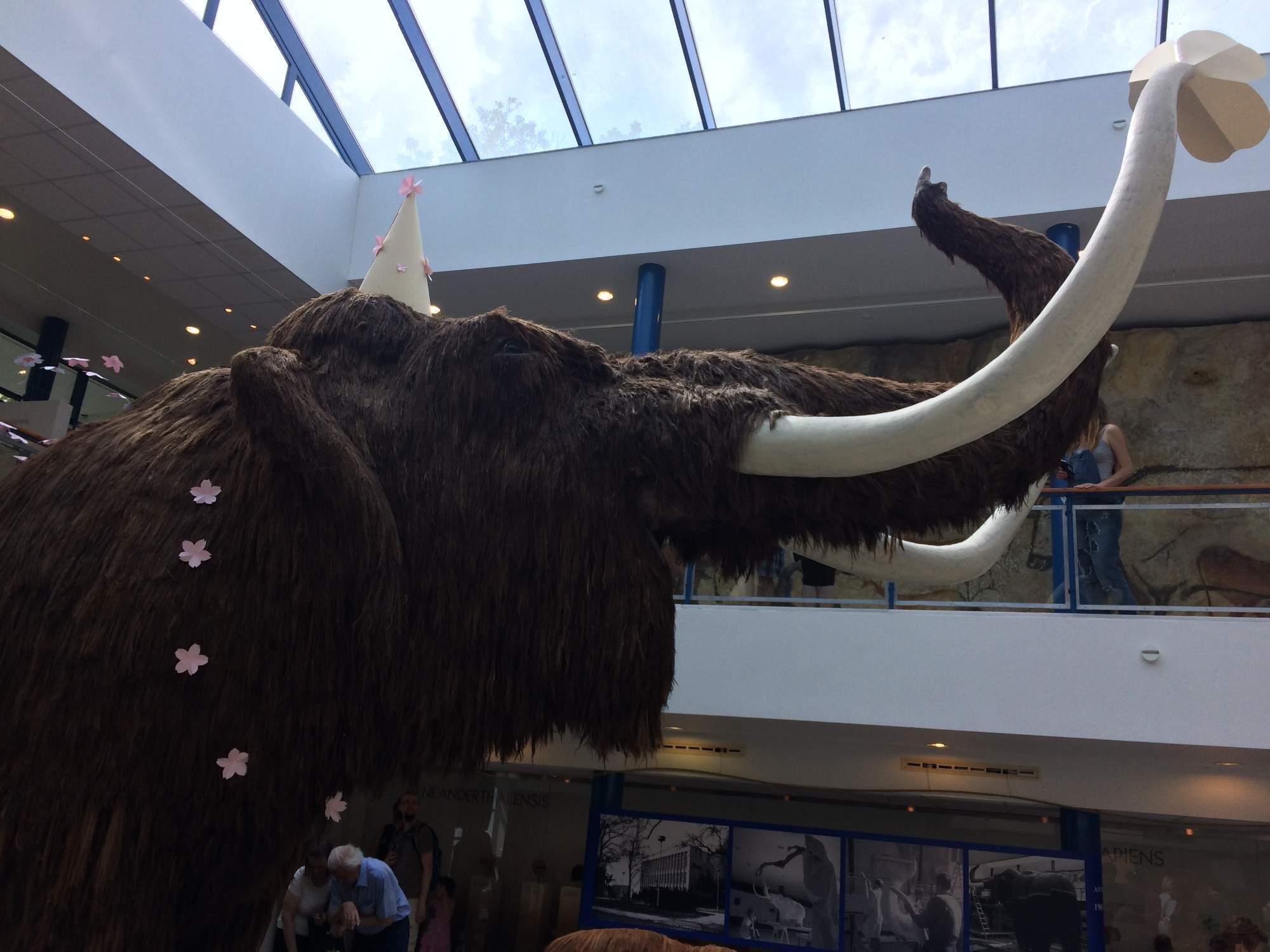 Model mamuta s narodeninovou čiapkou